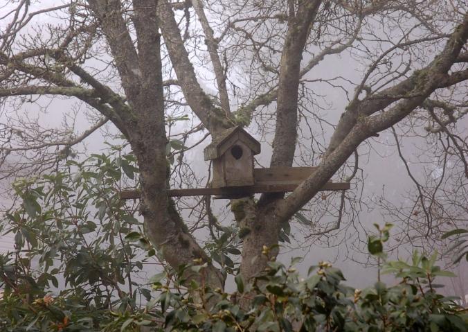 birdhouseclose